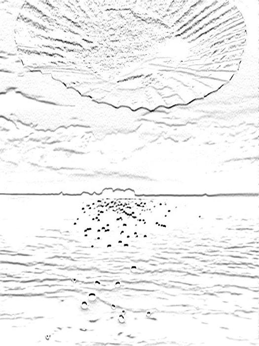 Lieber Erzsébet: Vénusz születése I. (digitális fotográfia alapú elektrográfia)