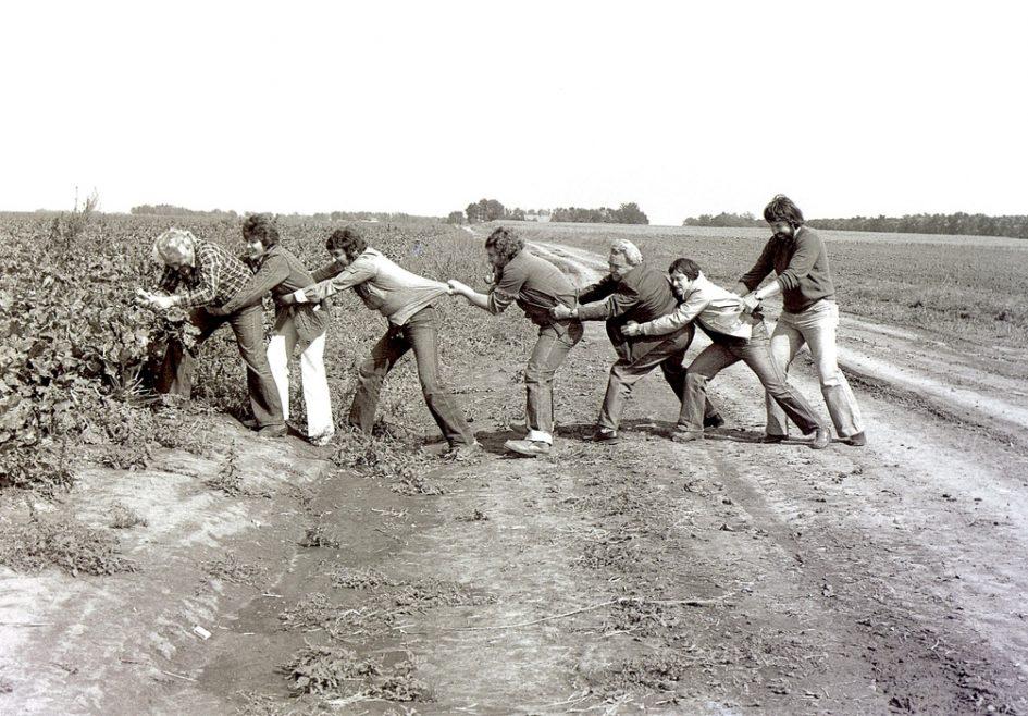 Répaszedés - Balról jobbra: Tripolsky Géza, a Zentai Művésztelep vezetője; Csernik Attila, a szövetkezet munkatársa; Soltis Lajos; Ács József; Keszég Károly; Torok Sándor