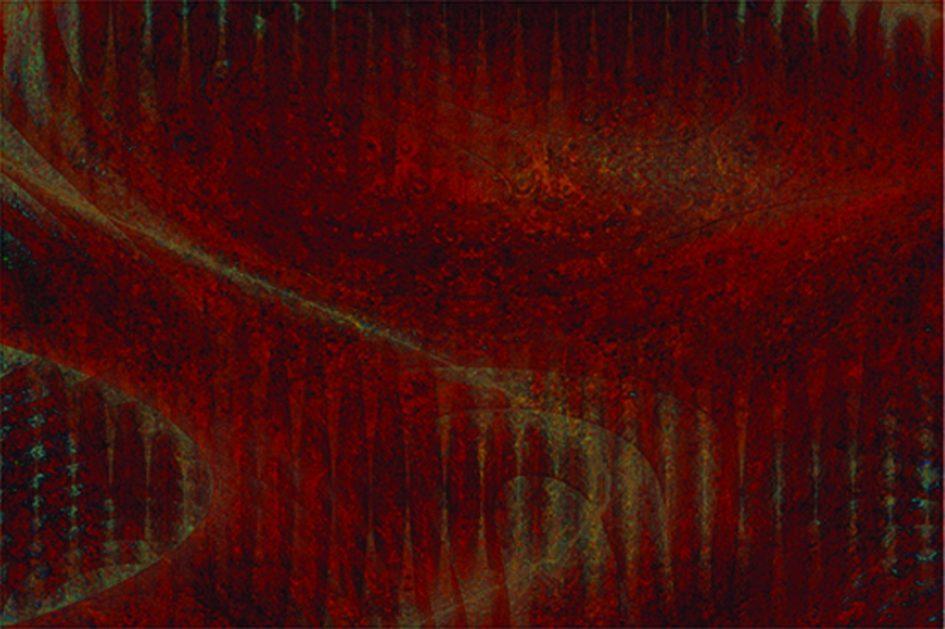 Füleky Adrienn: Áramlatok I., 2010, digitális print