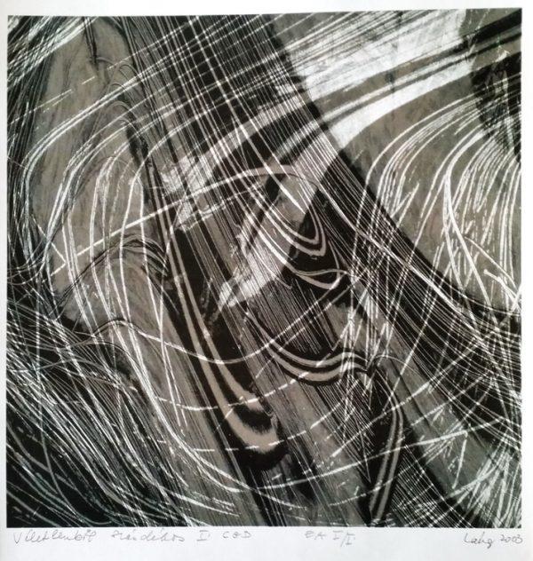 Láng Eszter: Véletlenből szándékos, 2003, CGD